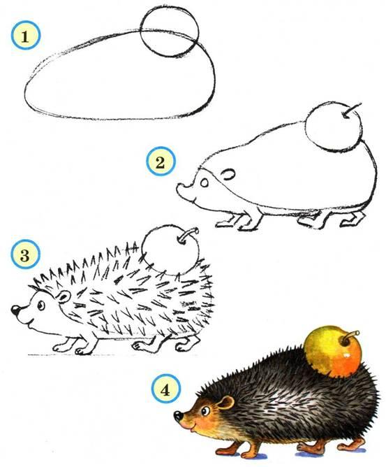 Как рисовать дельфина - b6