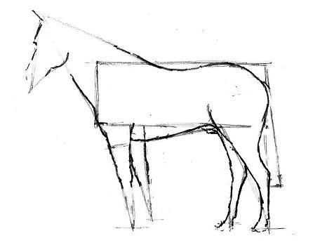 Как рисовать лошадь – Этап